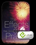 Effects Of Praise eBook (ePub)