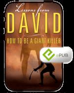 Lessons From David eBook (ePub)