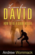 Indonesian: Lessons From David eBook (PDF)