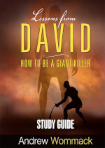 Lessons From David - Study Guide
