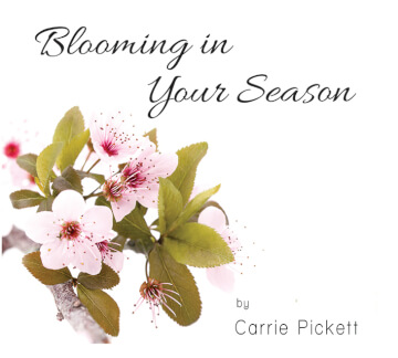 Blooming In Your Season - CD Album by Carrie Pickett