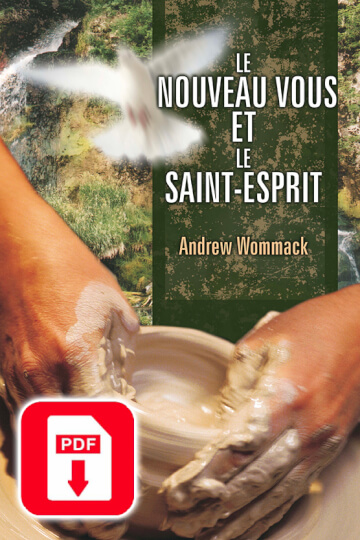 Le Nouveau Vous et Le Saint-Esprit version électronique - The New You & The Holy Spirit eBook