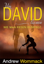 German: Lessons From David